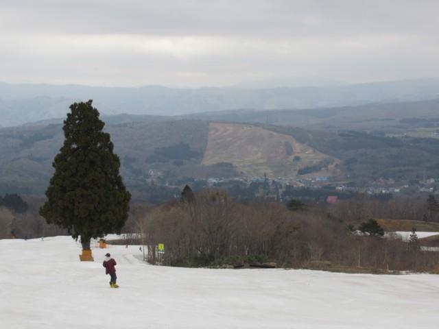 4月14日 ひるがの高原全く雪無し
