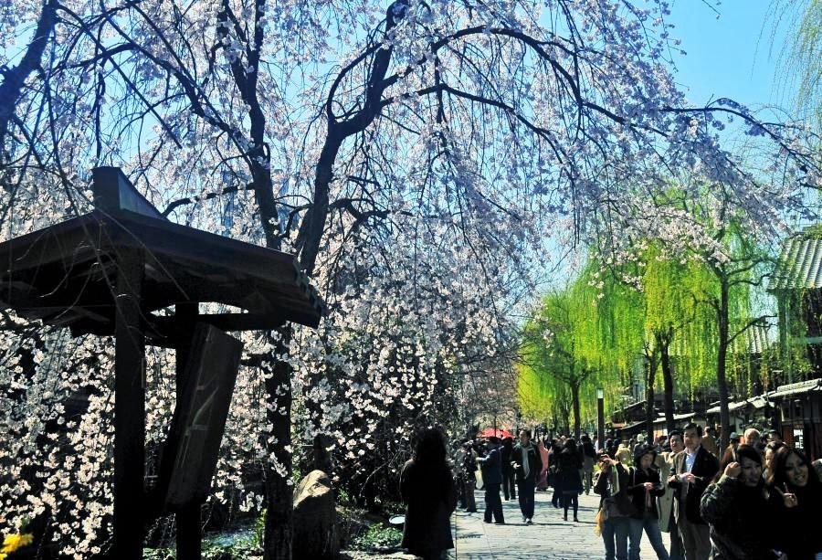 祇園白川1