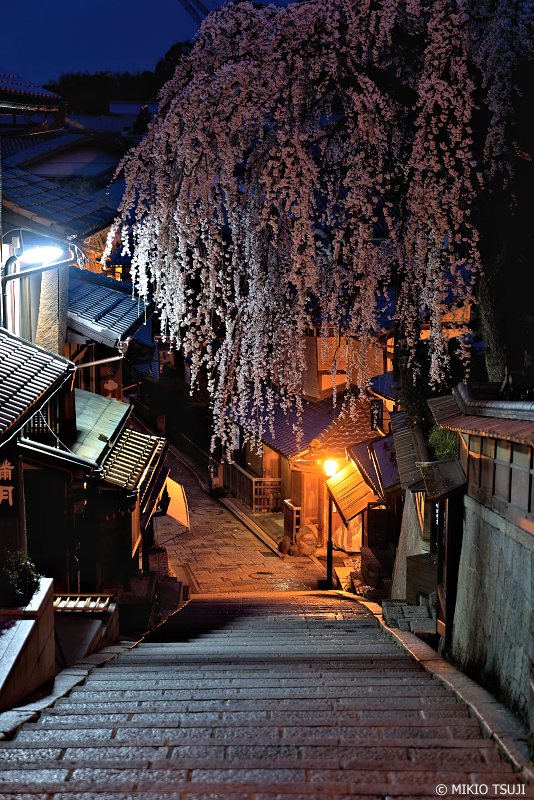 絶景探しの旅 - 0917 未明の産寧坂(三年坂)の枝垂れ桜 (京都市 東山区)