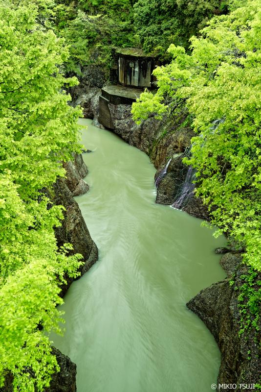 絶景探しの旅 - 0948 新緑の手取渓谷 (石川県 白山市)