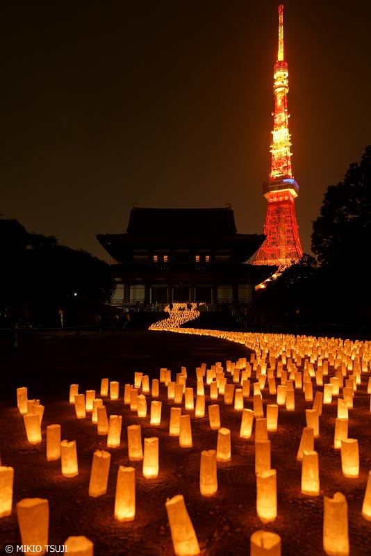 絶景探しの旅 - 0974 夜の境内に流れるキャンドルの河 (増上寺 東京都 港区)