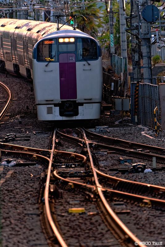 絶景探しの旅 - 0982 黄金の夕刻を走るホリデー快速 「ビューやまなし号」 (東京都 八王子市)