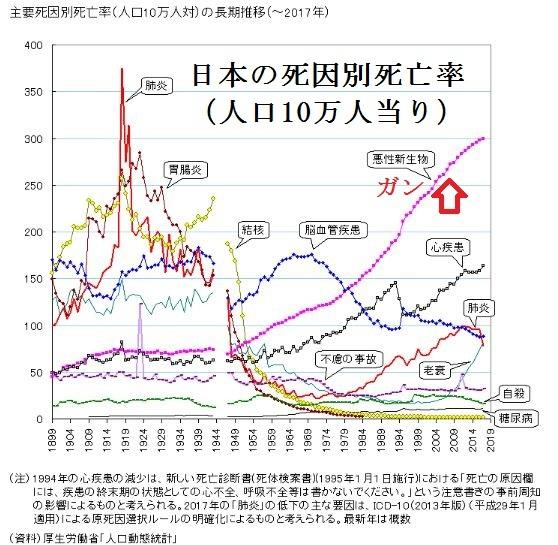日本の主要死因別死亡率(加工2)