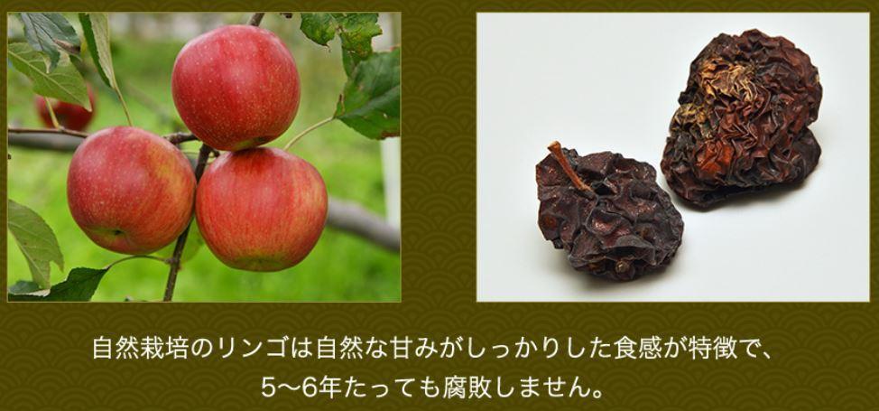 木村氏のりんご